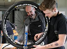 Vendeur Technicien Cycle  CQP